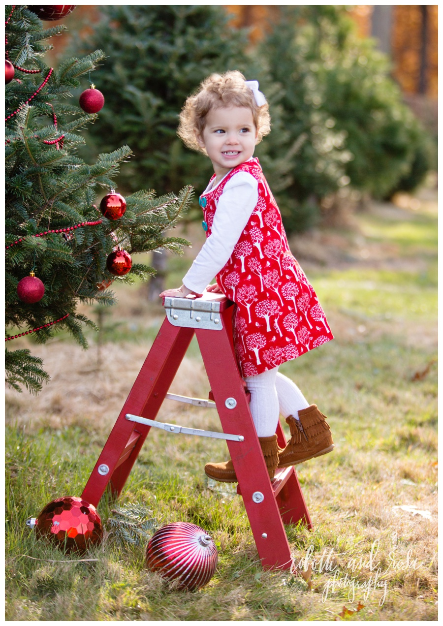 Christmas Tree Farm Photography.Christmas Tree Farm Mini Sessions L Boston Newborn